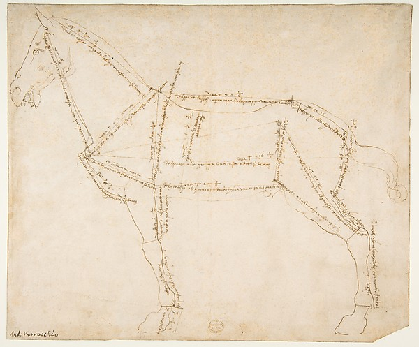 600x497 Andrea Del Verrocchio Measured Drawing Of A Horse Facing Left