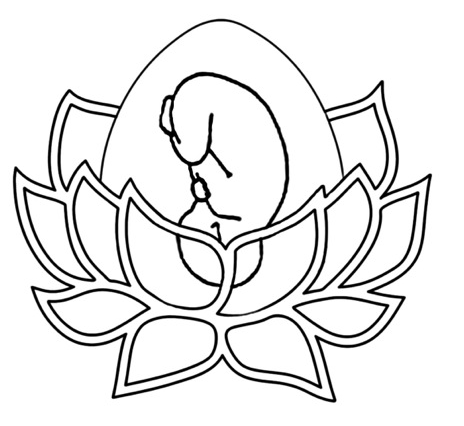 Midwife Drawing