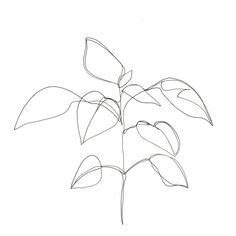 236x236 Original Abstract Minimalist Drawing Original Botanical