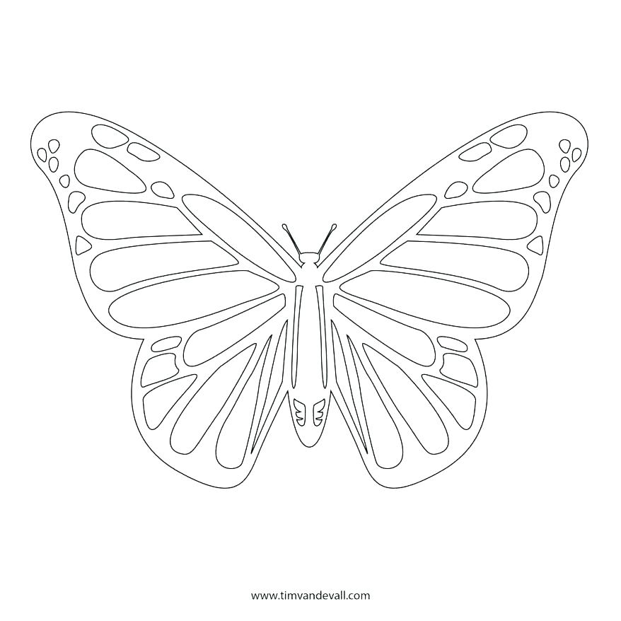 878x878 Monarch Butterfly Coloring Page Monarch Butterfly Coloring Page