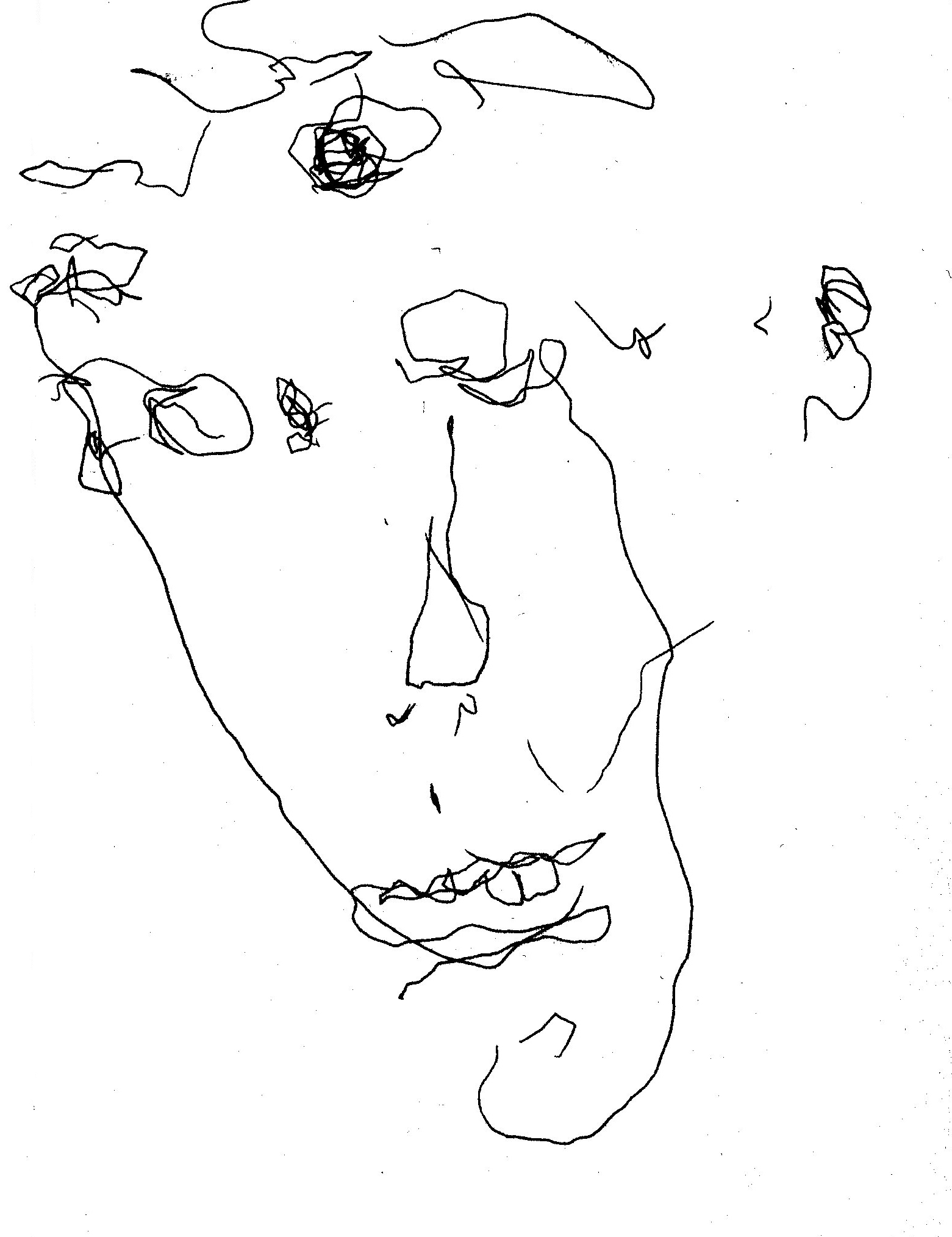 1561x2028 Moon Face Self Portrait, Pen Drawing In The Dark, By William Eaton