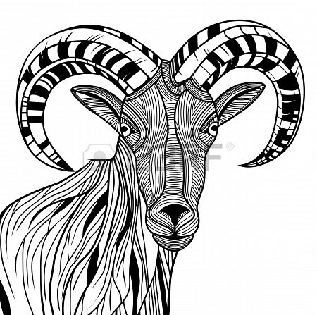 450x447 Ram Head Or Mountain Goat Line Art. Sheep Vector Animal