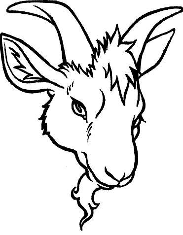 371x477 Goat's Head Tattoo By The Taxidermy