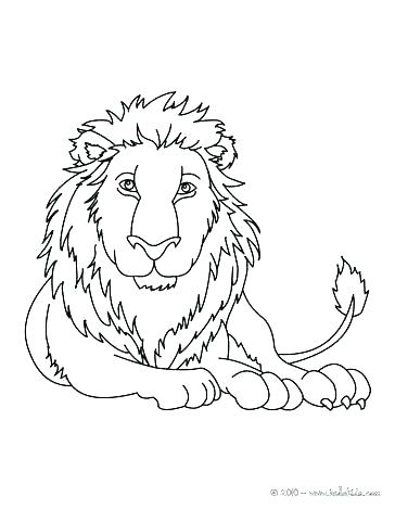 364x470 Baby Mountain Lion Coloring Pages Lion Face Coloring Page Lion