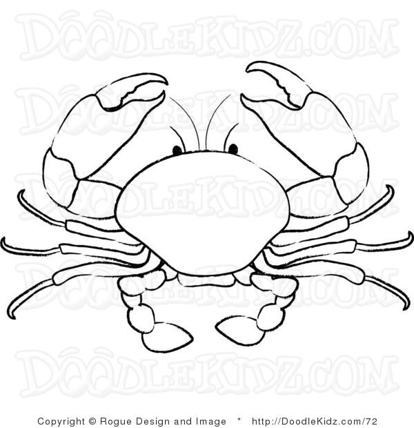 600x620 Collection Of Mud Crab Drawing High Quality, Free Cliparts