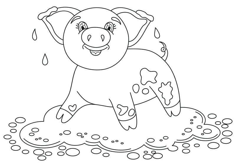 800x567 Pig In Mud Coloring Page Mud Man Coloring Page Mud Puddle Coloring