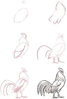 236x345 How To Draw A Bird Step By Step Easy With Pictures