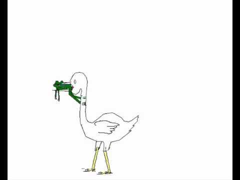 480x360 Don L Frog Bird Choke.wmv