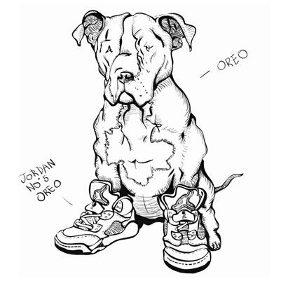 Nike Roshe Run Drawing