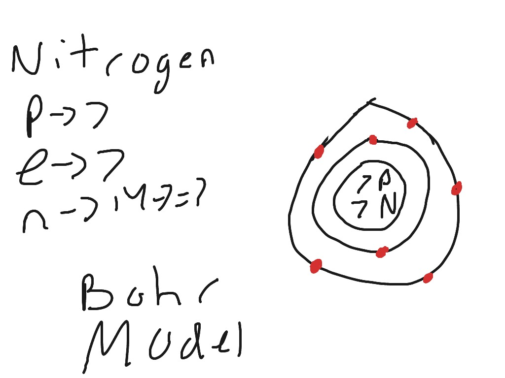 nitrogen drawing at getdrawings free for personal use nitrogen Nitrogen Cycle Diagram to Label 1024x768 anthony ragazzi showme