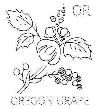 320x353 17 Best Cap Decor Images On Oregon Grape, Baseball Cap