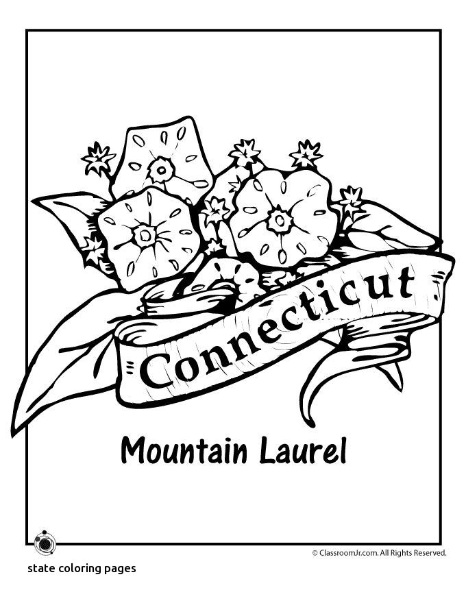 680x880 20 Lovely State Coloring Pages Msainfo.us