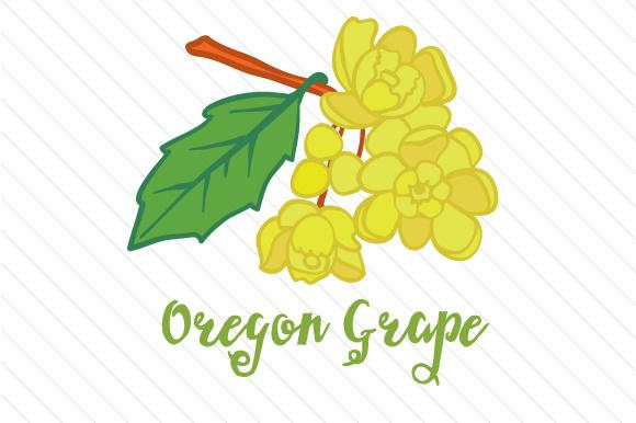 580x386 State Flower Oregon Grape Svg Cut File By Creative Fabrica Crafts