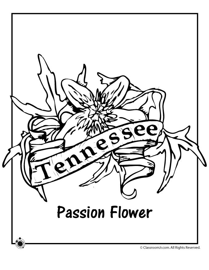 680x880 California State Flower Coloring Page Unique 78 Best Flower