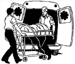 253x216 Free Paramedic Clipart