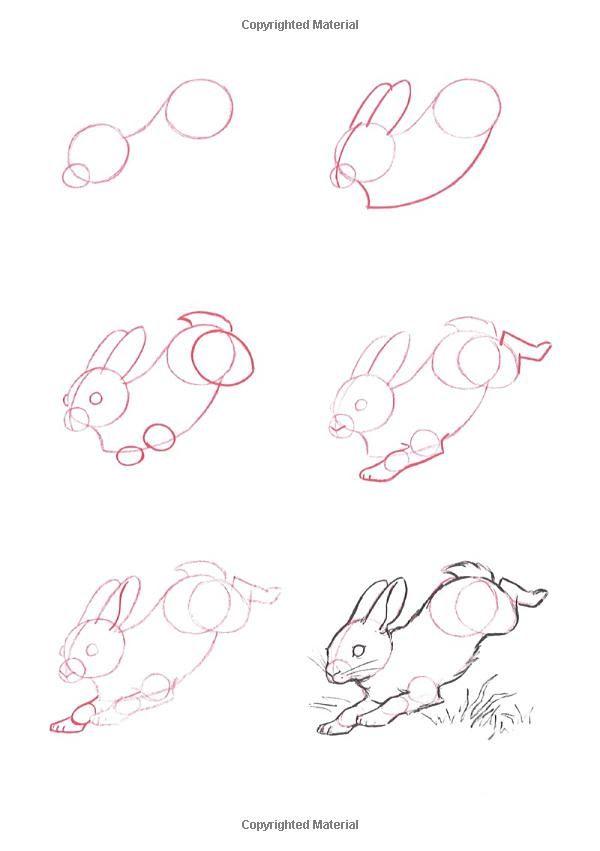 Pen Drawing Simple