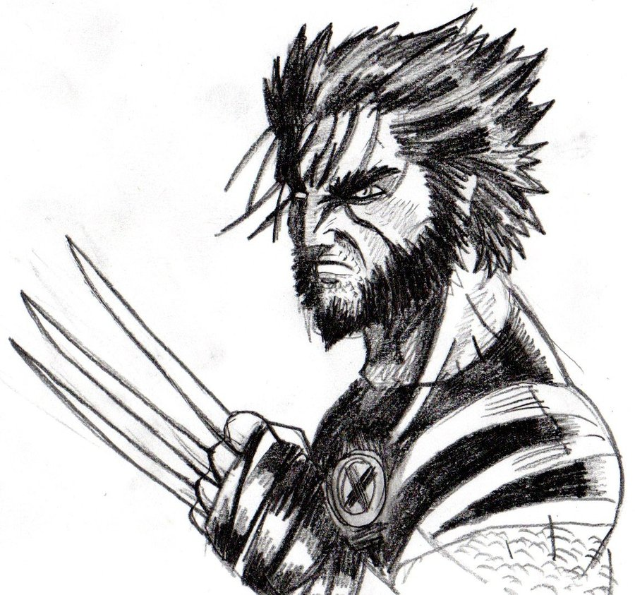 Pencil Drawing Of Wolverine at GetDrawings | Free download