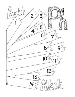 309x400 Ph Worksheet Coloring Page Litmus Paper Chemistry Pdf Printable