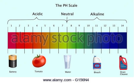 450x280 Diagram Of The Ph Scale With Examples Of Acidic, Neutral