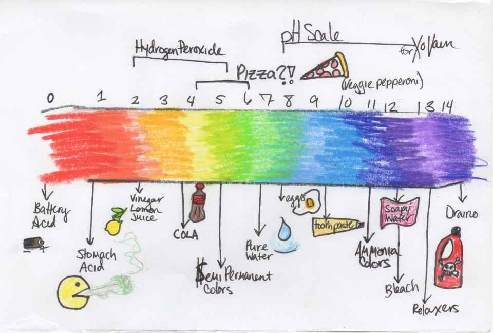 960x648 The Ph Scale, As Illustrated By Me, Including Pizza And Burps