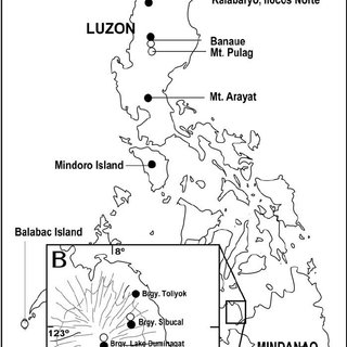 320x320 A) Map The Philippines Showing Localities Where Species