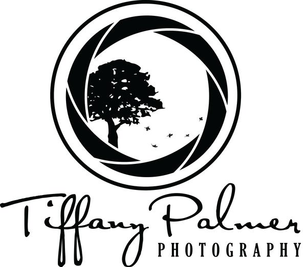 600x523 Photography Logo