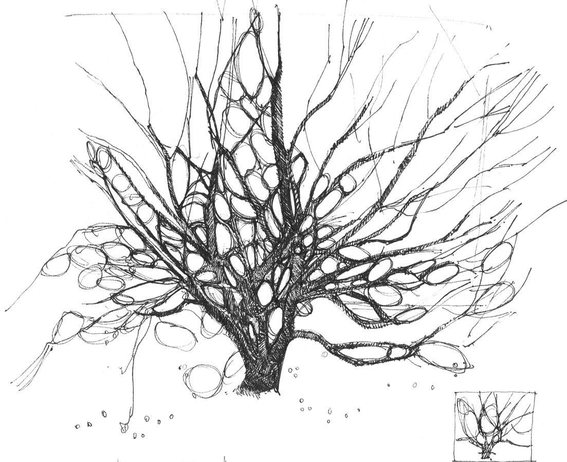 Plantation Drawing