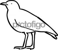 200x172 Download Freehand Icon From Pictofigo For Egyptian Plover