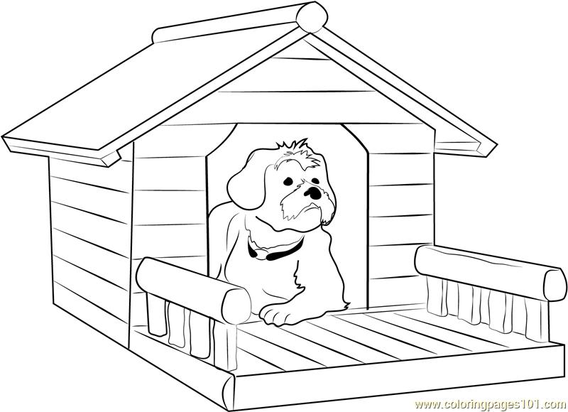 Wiring For Light Dog House