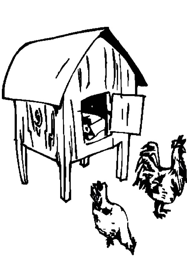 600x875 Collection Of Chicken House Drawing High Quality, Free