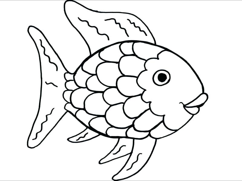 800x600 Inspirational Pretty Color Pages Best Of The Rainbow Fish Coloring