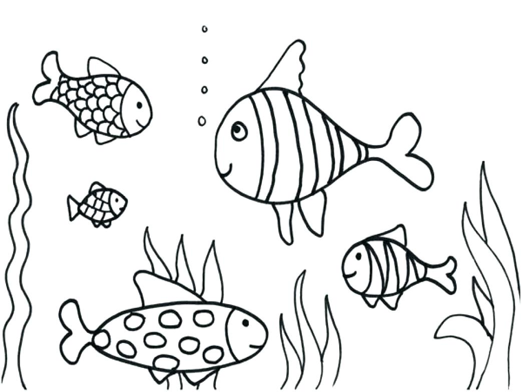 Pretty Fish Drawing at GetDrawings | Free download