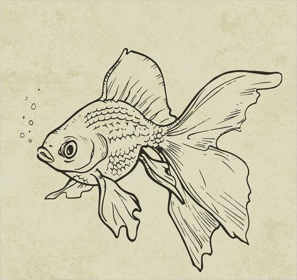 600x567 Drawn Fish Ink