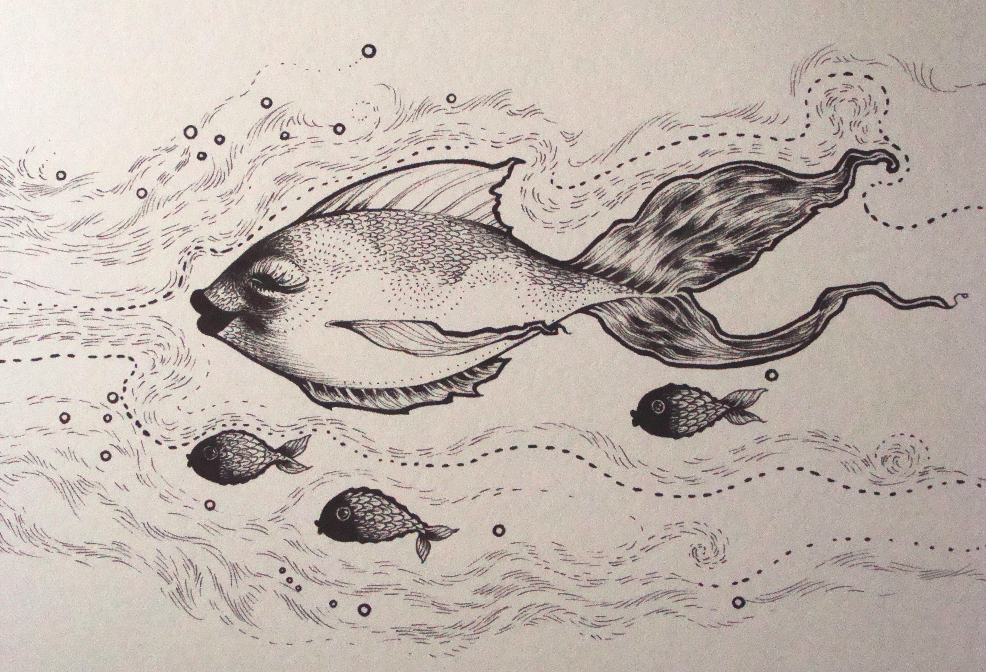 3264x2224 Theme Fish Vieveandlynsker