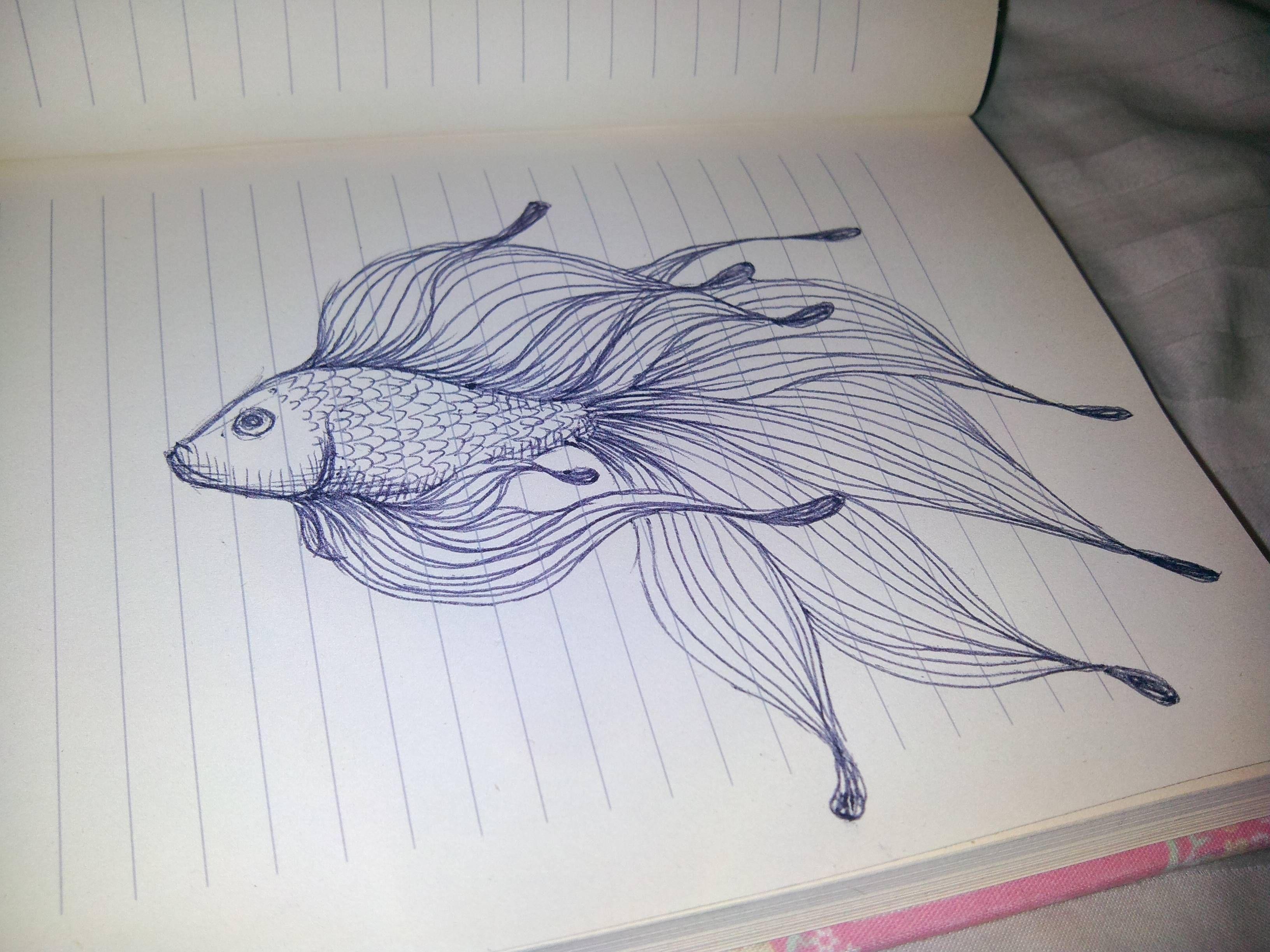 3264x2448 Pretty Fish Drawing