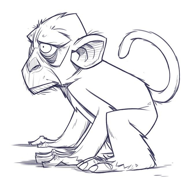 Primate Drawing