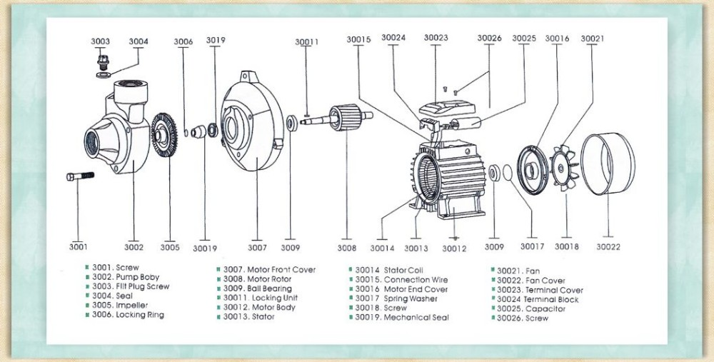 1000x507 0.5hp Qb60 Water Pump Toy Electric Water Pump Drawing