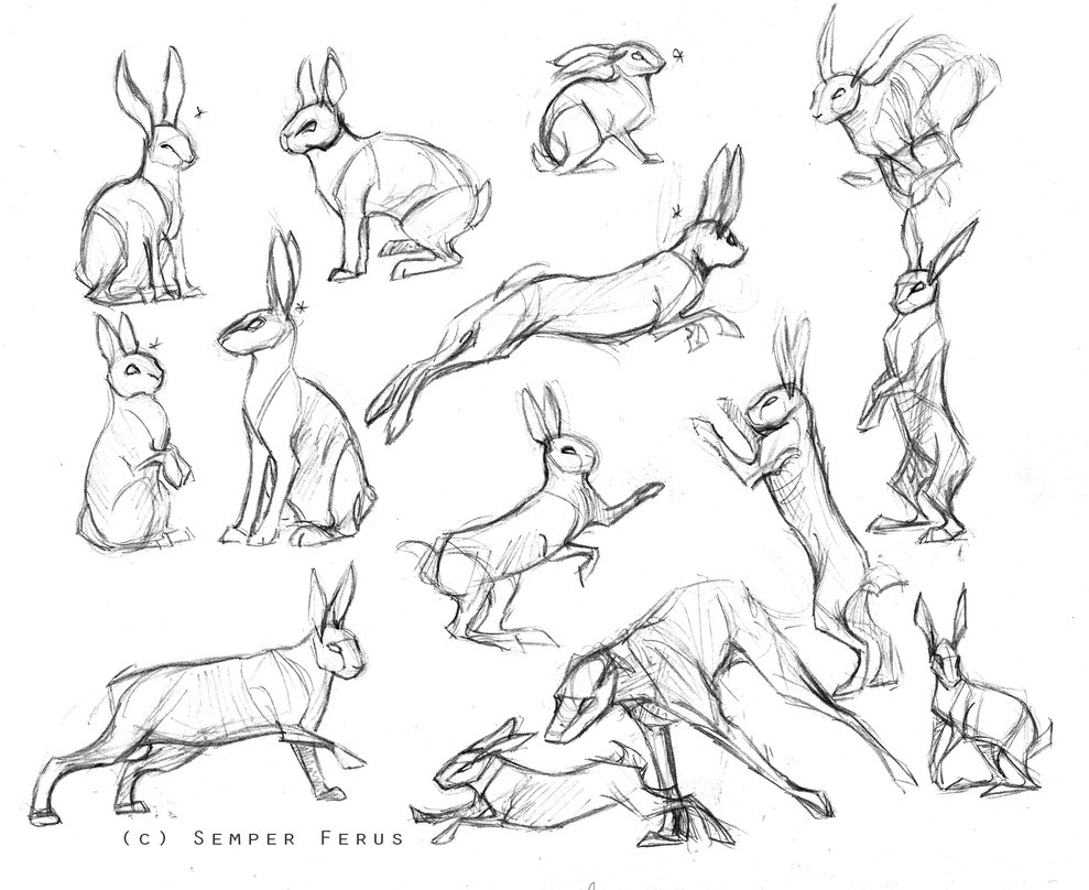 989x808 Sketches