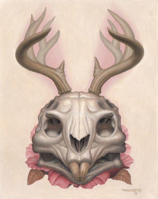 644x810 Jackalope Skull.jpg Sparkmakers Drawing
