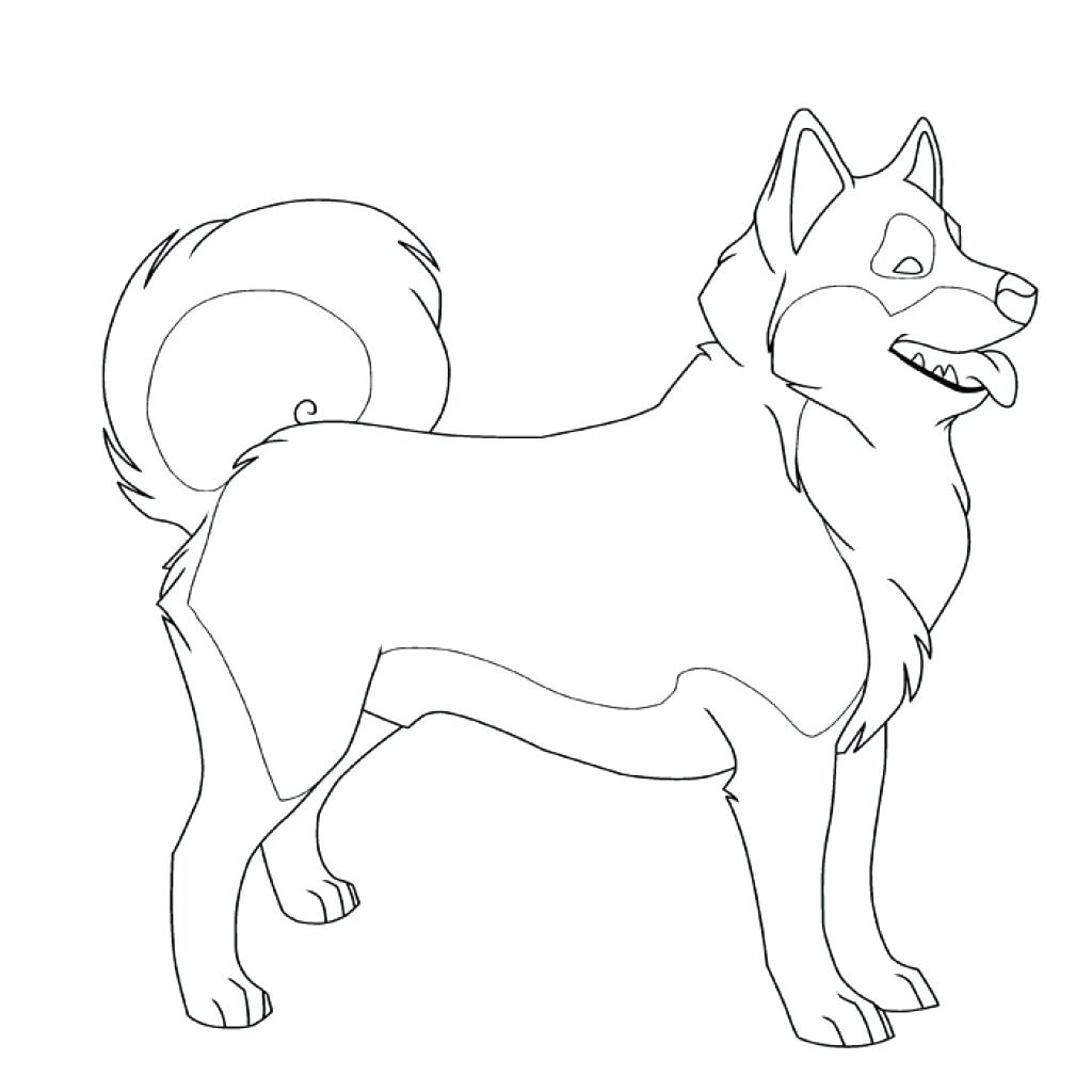 Realistic Husky Drawing at GetDrawings.com   Free for personal use ...