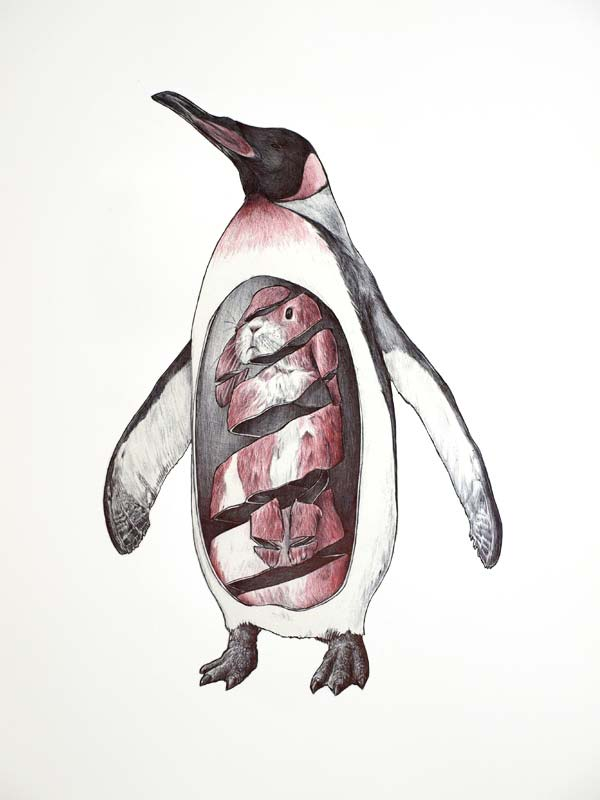 600x800 Collection Of Cool Animal Drawing Ideas High Quality, Free