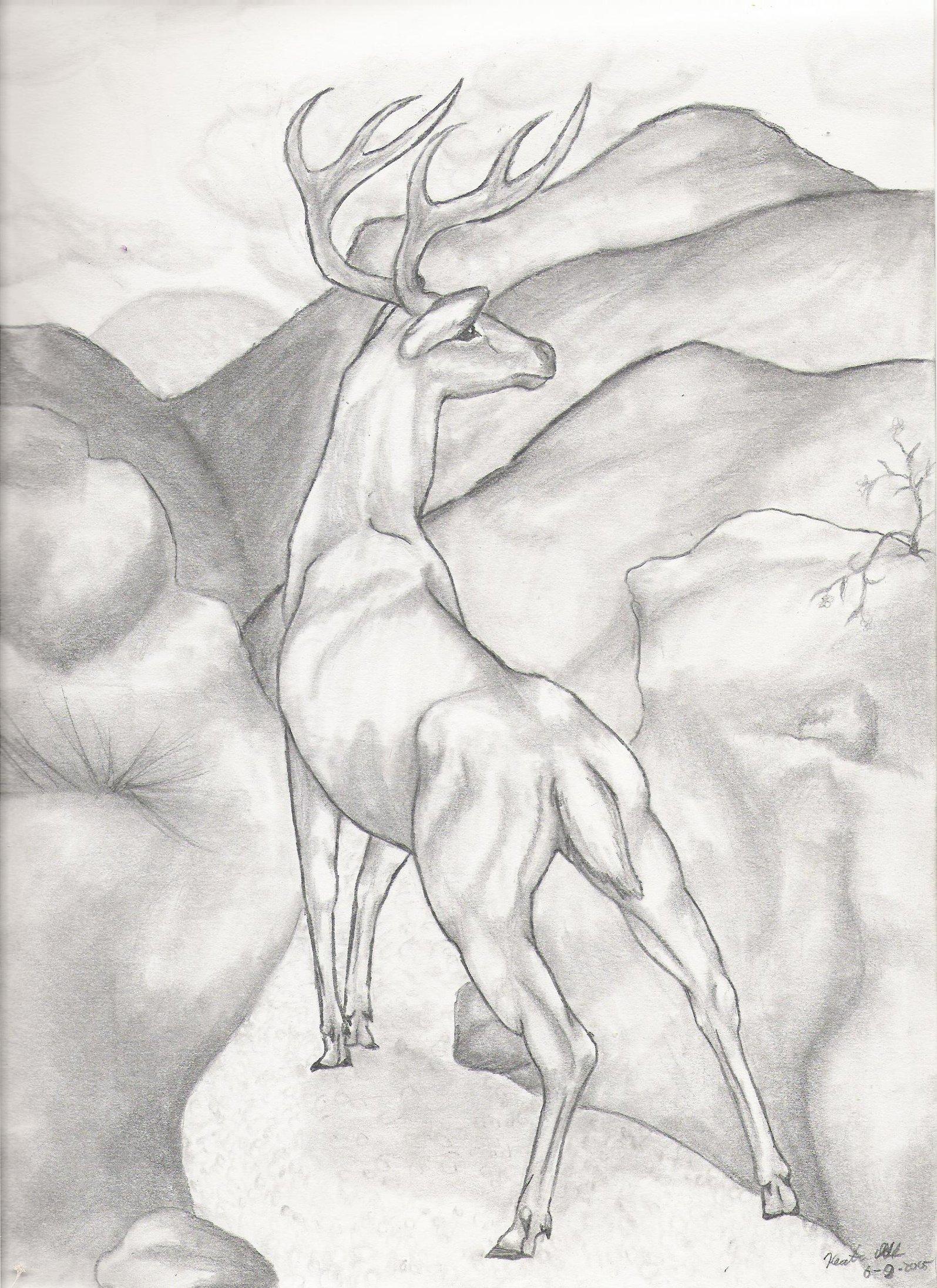 1595x2193 Deer Ridge By Volpone