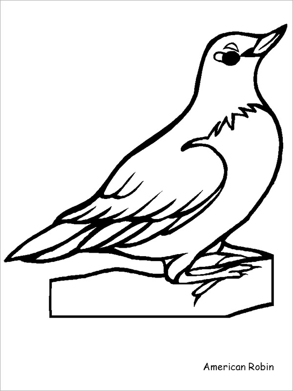 Robin Outline Drawing