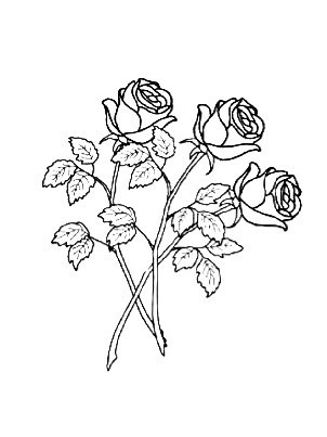 302x403 Rose Outlines Tumblr