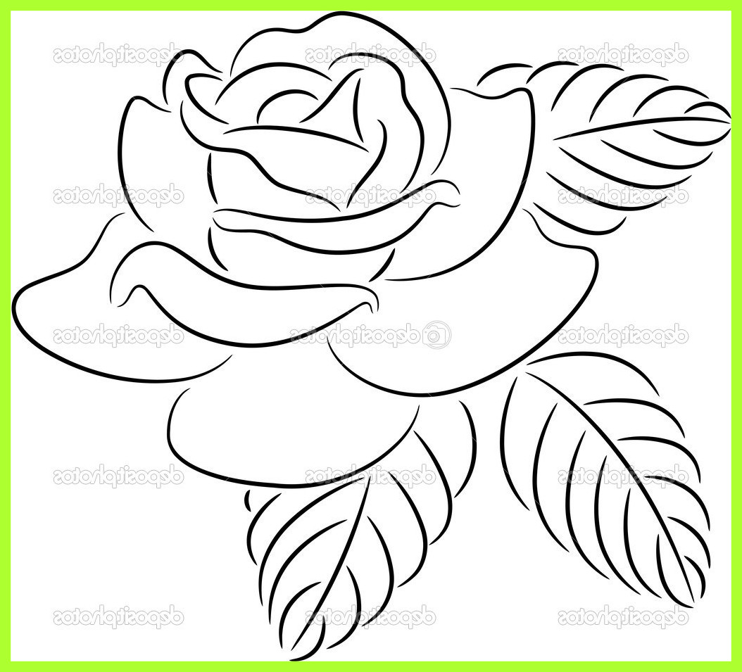 1054x955 23 Ideas Of Rose Flower Drawing Tumblr