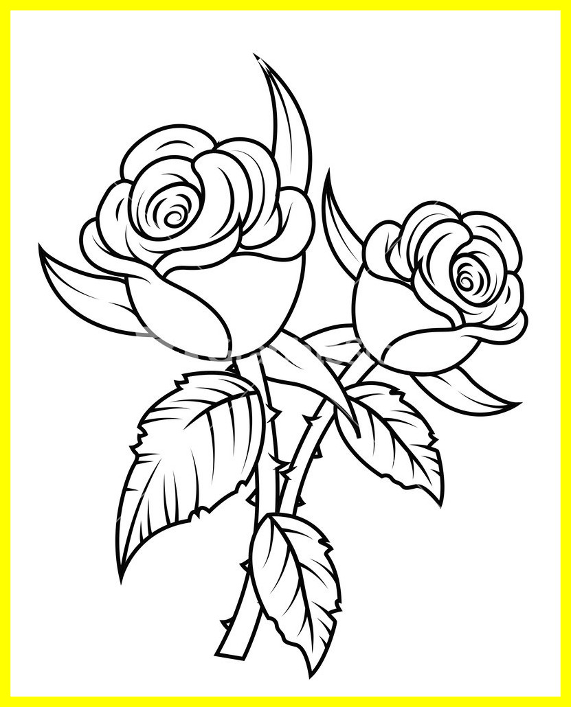 831x1030 Appealing Black And White Rose Drawing At Getdrawings For Personal