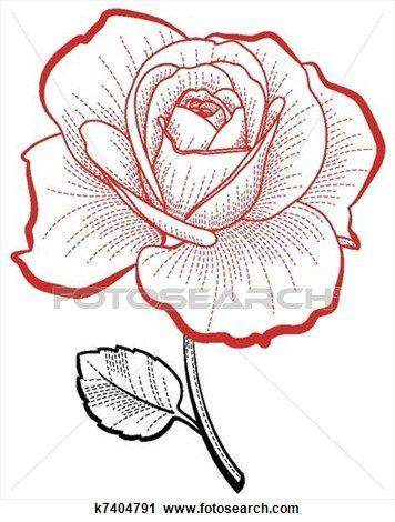 356x470 Hand Drawing Rose Clipart Hand Drawn, Clip Art And Rose
