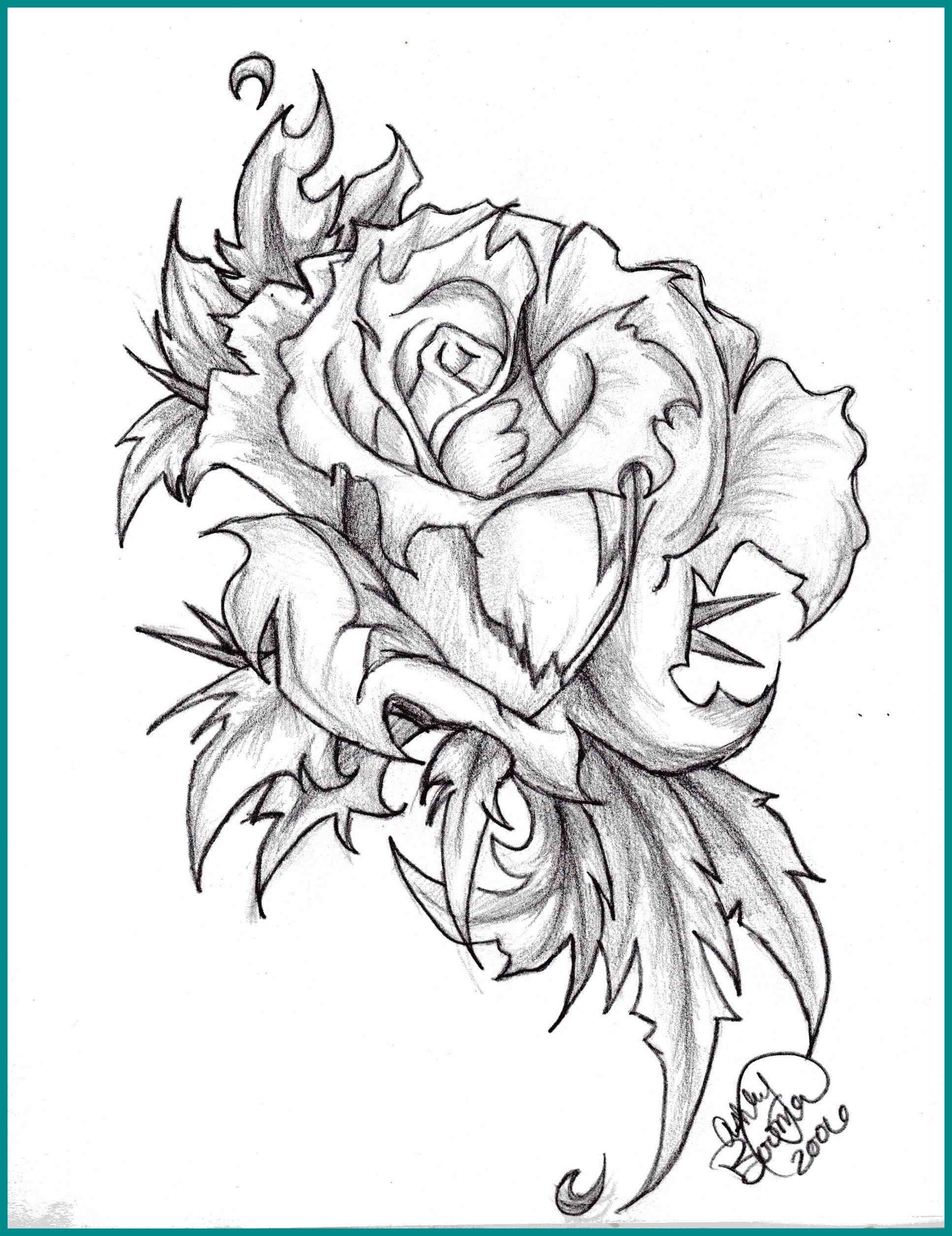 1930x2505 Stunning Rose Flower Black And White Drawing Clipartxtras