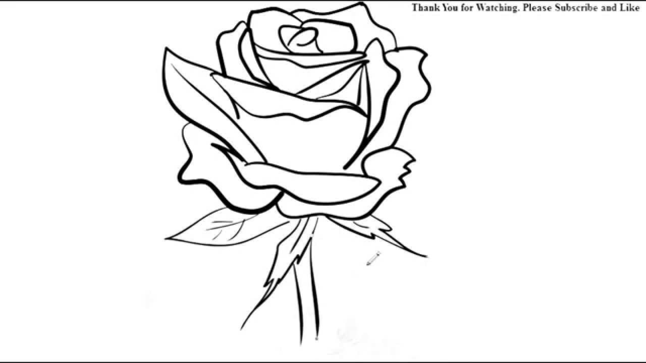 1280x720 How To Draw A Rose Flower Easy Line Drawing Sketch