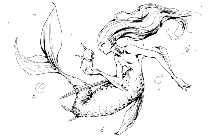 736x477 51 Best Art Of Andrew Mar Images On Sketch Books